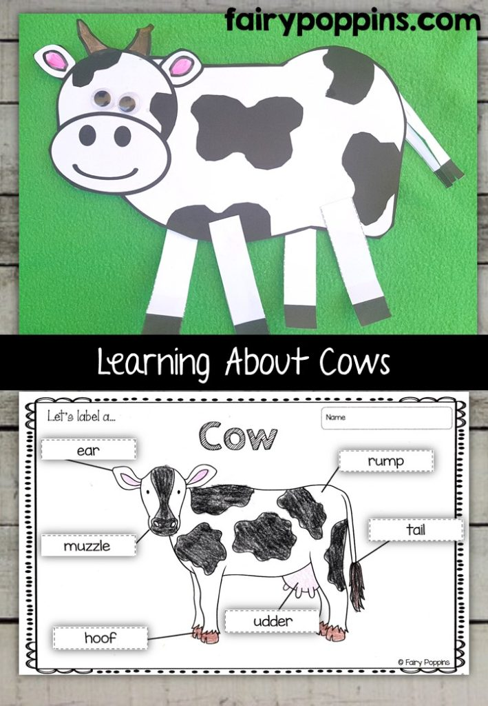 Cow craft template and worksheet activities (labeling, description, writing) - Fairy Poppins