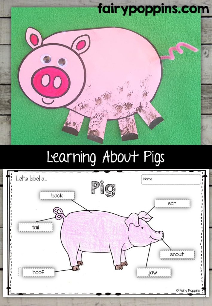 Pig craft template and worksheet activities (labeling, description, writing) - Fairy Poppins