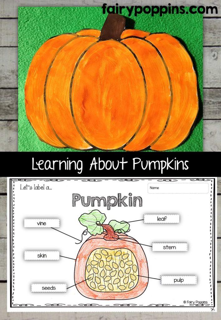 Pumpkin craft template and worksheet activities (labeling, description, writing) - Fairy Poppins