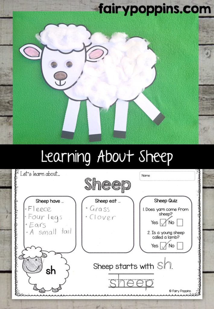 Sheep craft template and worksheet activities (labeling, description, writing) - Fairy Poppins
