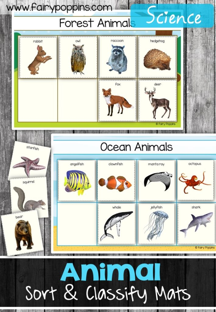 animal sort and classify fairy poppins. Black Bedroom Furniture Sets. Home Design Ideas