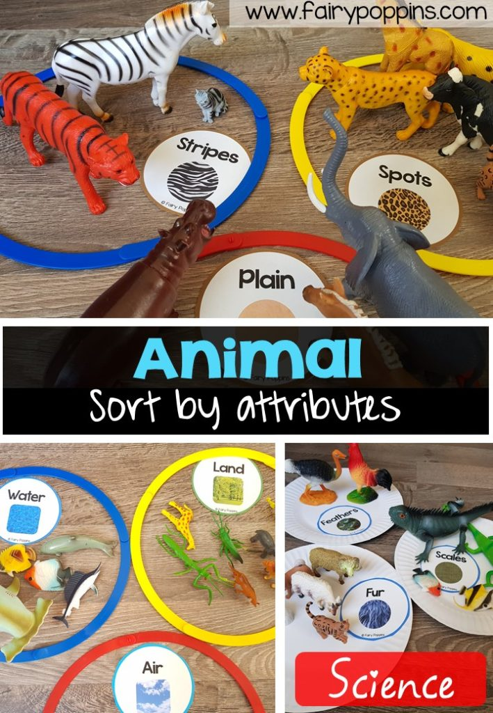 Animal sort and classify labels, mats and worksheet activities ~ Fairy Poppins