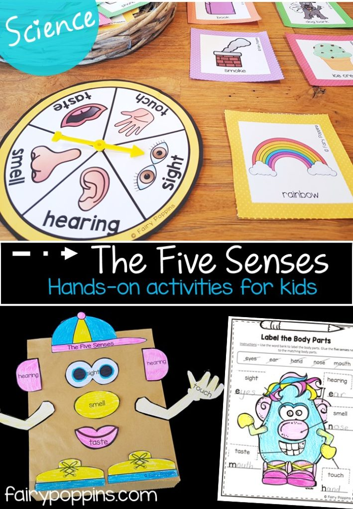 The five senses science worksheets, games and activities - Fairy Poppins